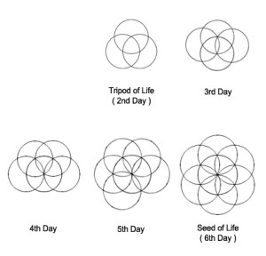 Remaining Days of Creation 1